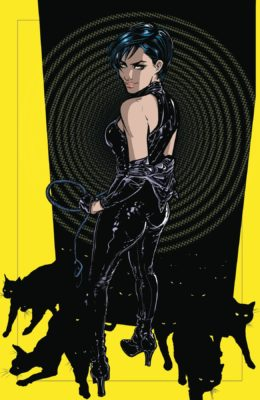 CATWOMAN #12 PRE-ORDER 12/06/19 VF/NM DC