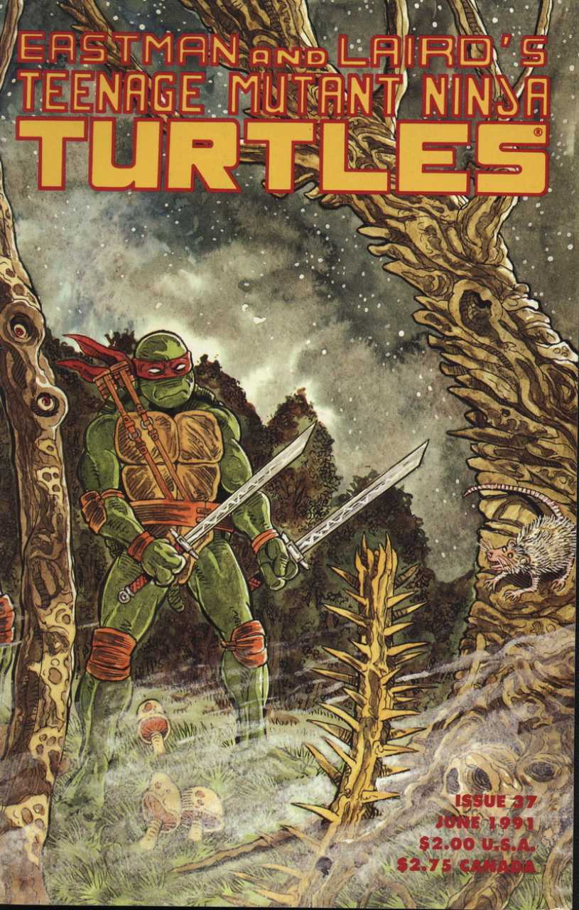 TEENAGE MUTANT NINJA TURTLES #37 (1984) VF MIRAGE STUDIOS